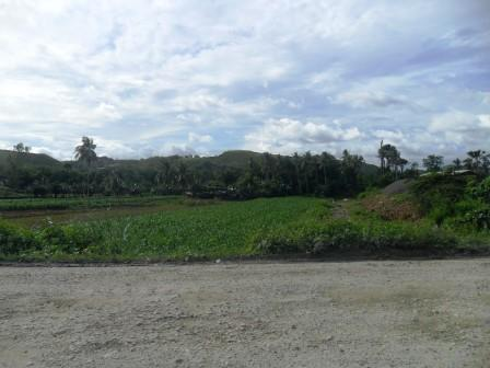 lot-for-sale-back-of-sm-consolacion-flat-land-wide-road-wide-frontage