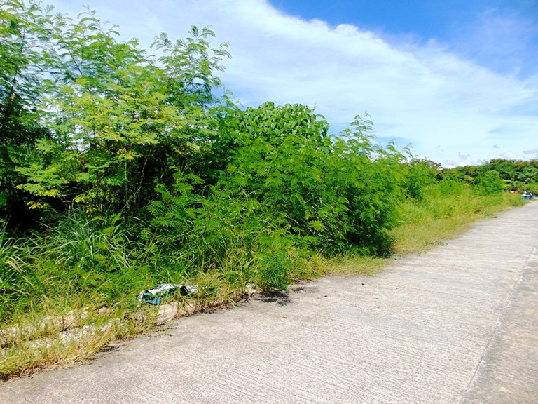 residential-lot-for-sale-in-talisay-cebu